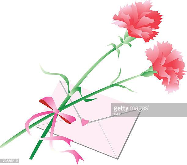 carnations and letter, mothers day - carnation flower stock illustrations, clip art, cartoons, & icons