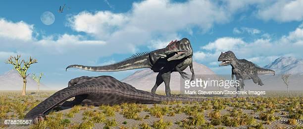 Carnivorous Allosaurus dinosaurs approaching the carcass of a dead Diplodocus sauropod dinosaur.