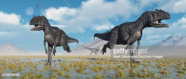 Carnivorous Allosaurus dinosaurs during Earths Jurassic period.