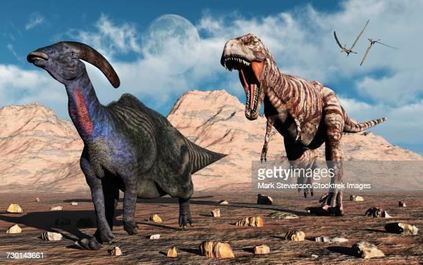 a carnivorous t-rex chasing a lone parasaurolophus dinosaur. - mammal stock illustrations