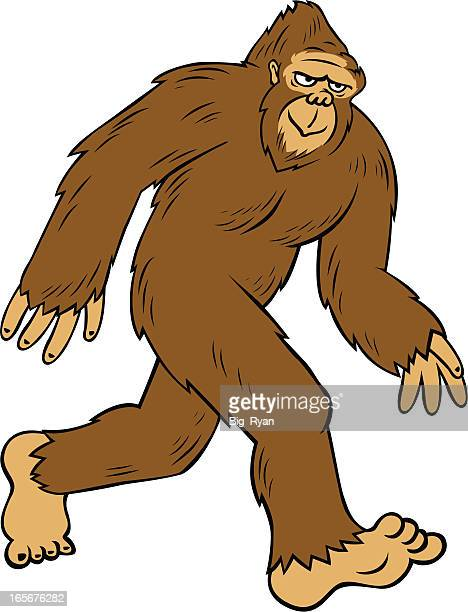 cartoon bigfoot - bigfoot stock illustrations