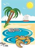 Cartoon crab in beach rock pool