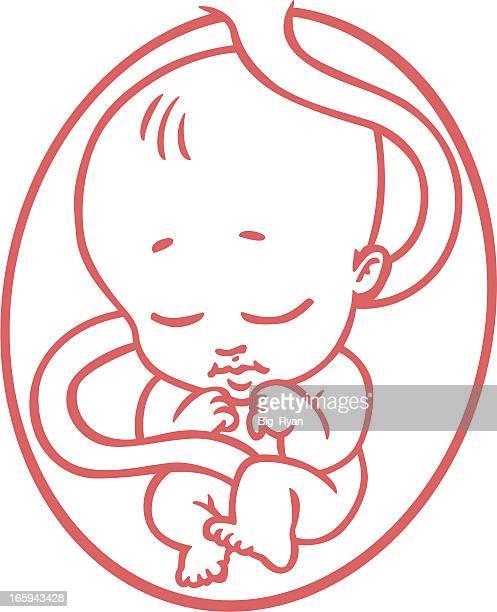 cartoon fetus - abortion stock illustrations, clip art, cartoons, & icons