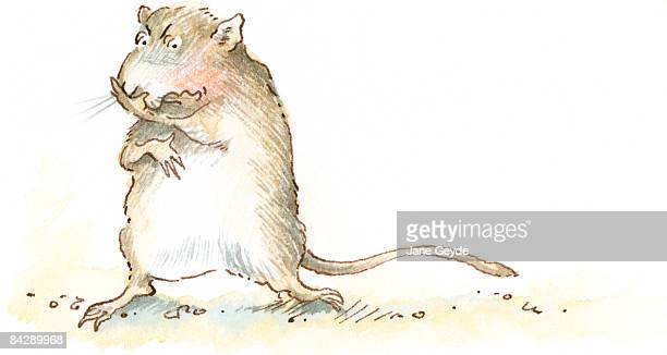 Cartoon of of gerbil standing with paw holding nose and mouth in disgust