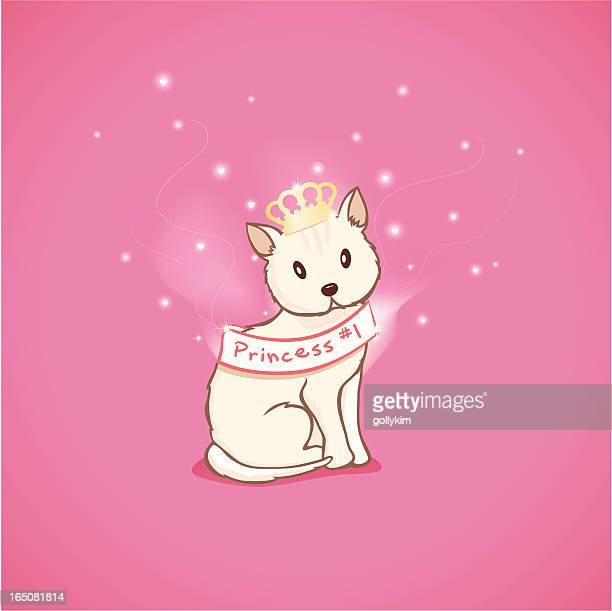 stockillustraties, clipart, cartoons en iconen met cat beauty pageant - sjerp