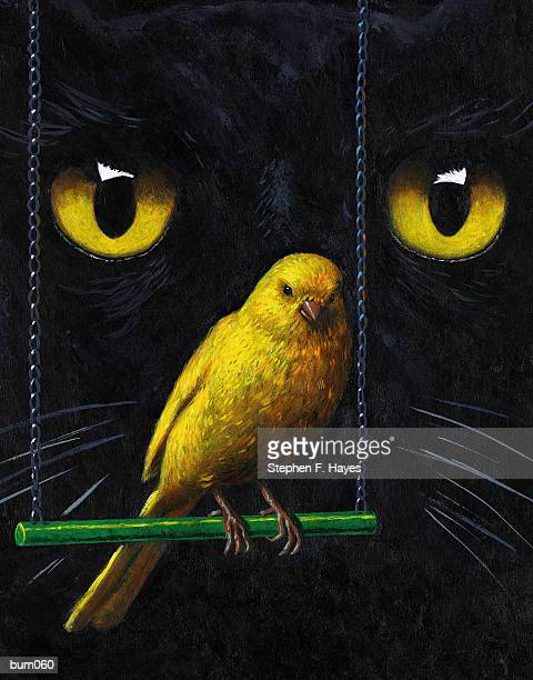 cat & canary - stehen stock illustrations