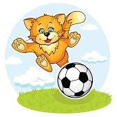 Cat footboler