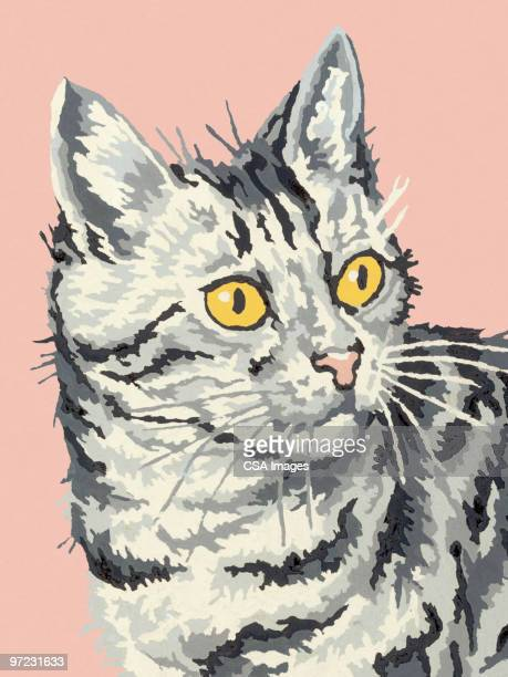 cat - painted image stock illustrations