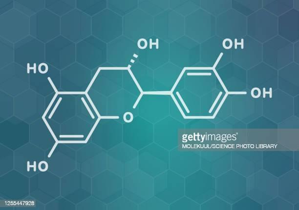 catechin herbal antioxidant molecule, illustration - chemistry stock illustrations
