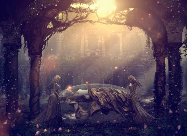 caucasian women mourning sleeping friend - fantasy stock illustrations