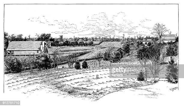ilustraciones, imágenes clip art, dibujos animados e iconos de stock de cementerio en las tierras de labrantío - granja