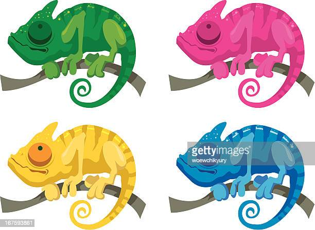 chameleons - chameleon stock illustrations, clip art, cartoons, & icons