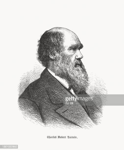 charles darwin (1809–1882), britischer naturwissenschaftler - darwin stock-grafiken, -clipart, -cartoons und -symbole