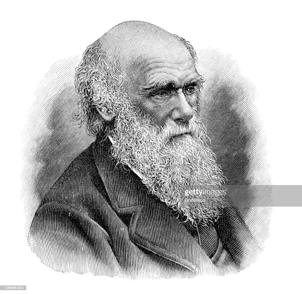 Charles Darwin portrait illustration : stock illustration