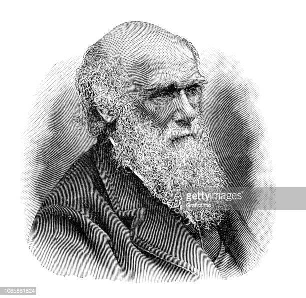charles darwin portrait illustration - fine art portrait stock illustrations