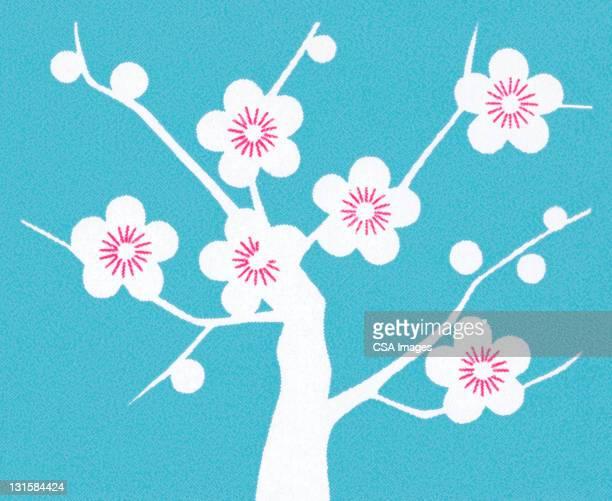 illustrations, cliparts, dessins animés et icônes de cherry blossoms on tree - fleur de cerisier