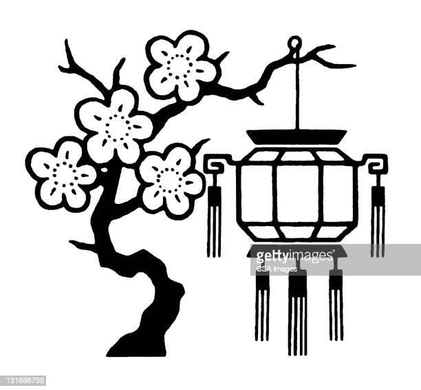 illustrations, cliparts, dessins animés et icônes de cherry tree and lantern - cerisier japonais