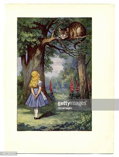Cheshire Cat on tree illustration, (Alice's Adventures in Wonderland)