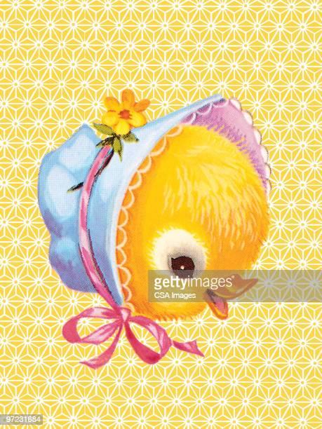 chick - hood clothing stock illustrations