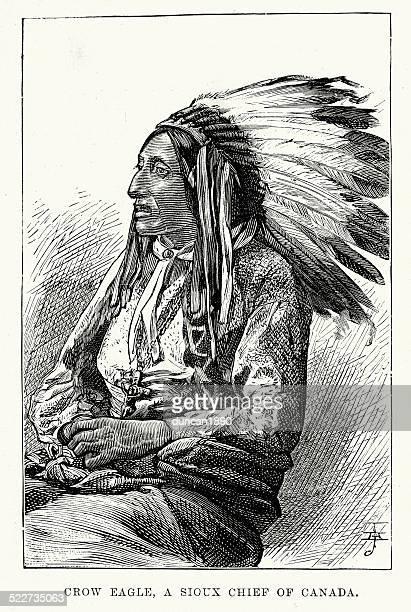 ilustraciones, imágenes clip art, dibujos animados e iconos de stock de crow eagle un jefe sioux nativo americano - indios americanos sioux
