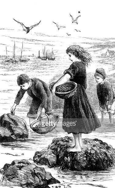 Children with baskets at the shore collecting limpets