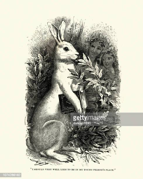 childrens illustration, snowdrop the rabbit holding a book, 1870s - rabbit animal stock illustrations, clip art, cartoons, & icons