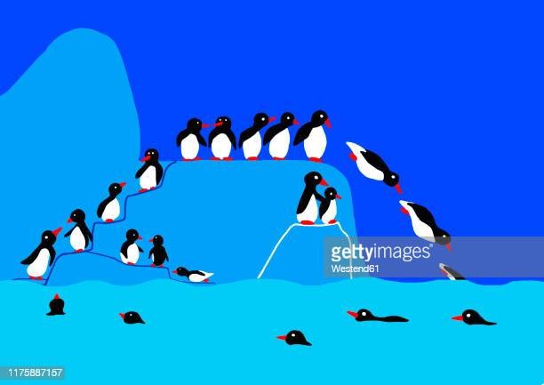 child's drawing of penguins on iceberg jumping into water - heading the ball stock illustrations