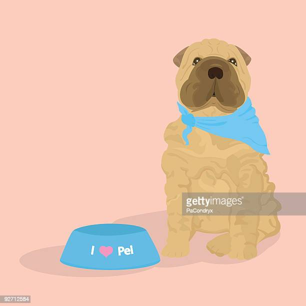 chinese sharpei puppy - a passion - dog bowl stock illustrations, clip art, cartoons, & icons