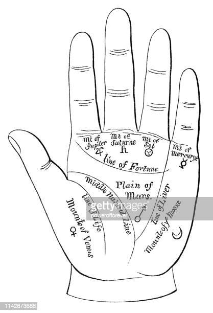 chiromancy (palmistry or palm reading) - renaissance magic - fortune telling stock illustrations