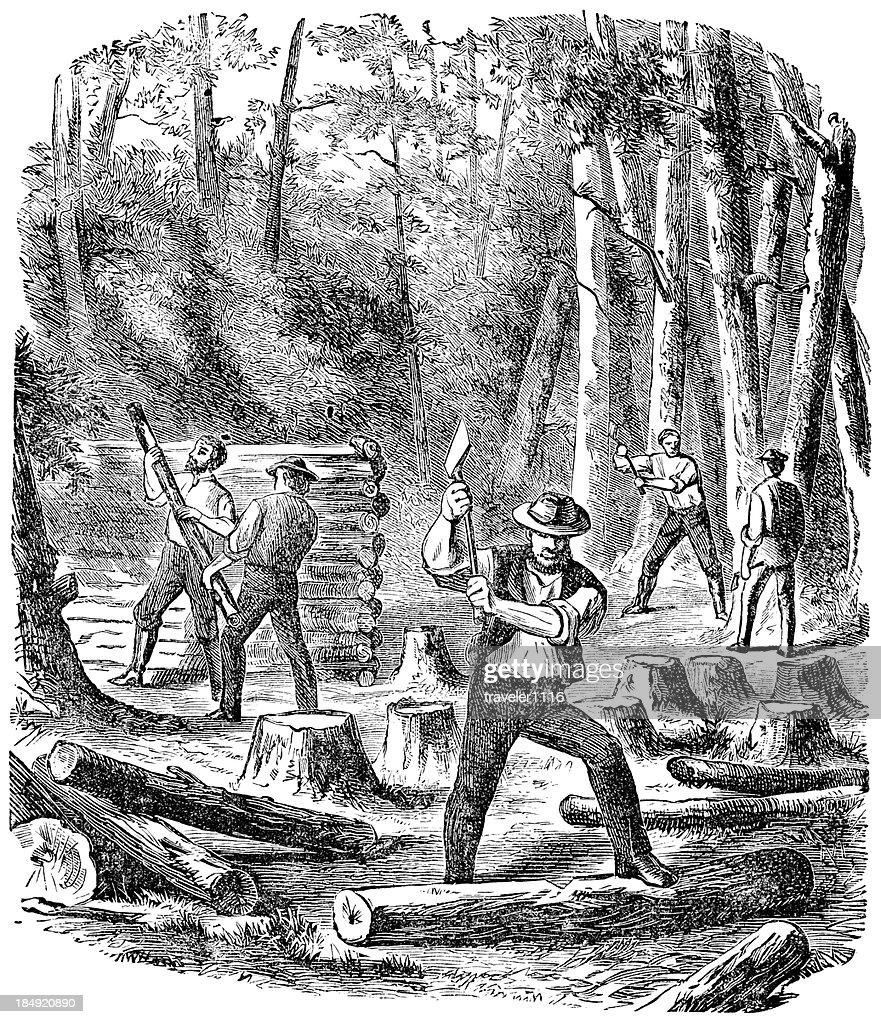 Chopping Wood : stock illustration