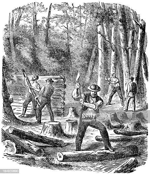 chopping wood - 1874 stock illustrations, clip art, cartoons, & icons