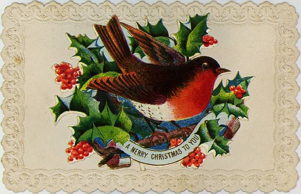 A traditional Christmas robin and sprigs of holly decorate...