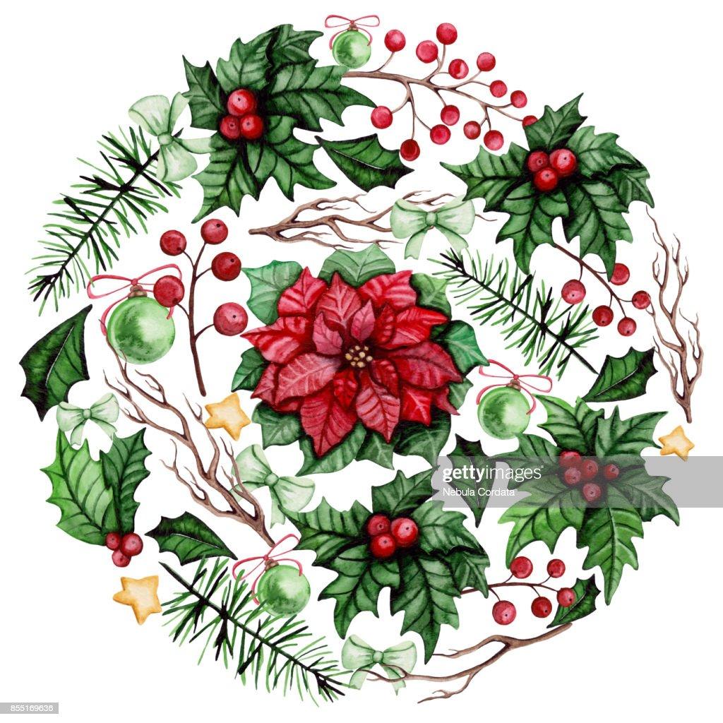 Kreis Mit Aquarell Weihnachtsstern Holly Zweige Und Beeren Stock ...
