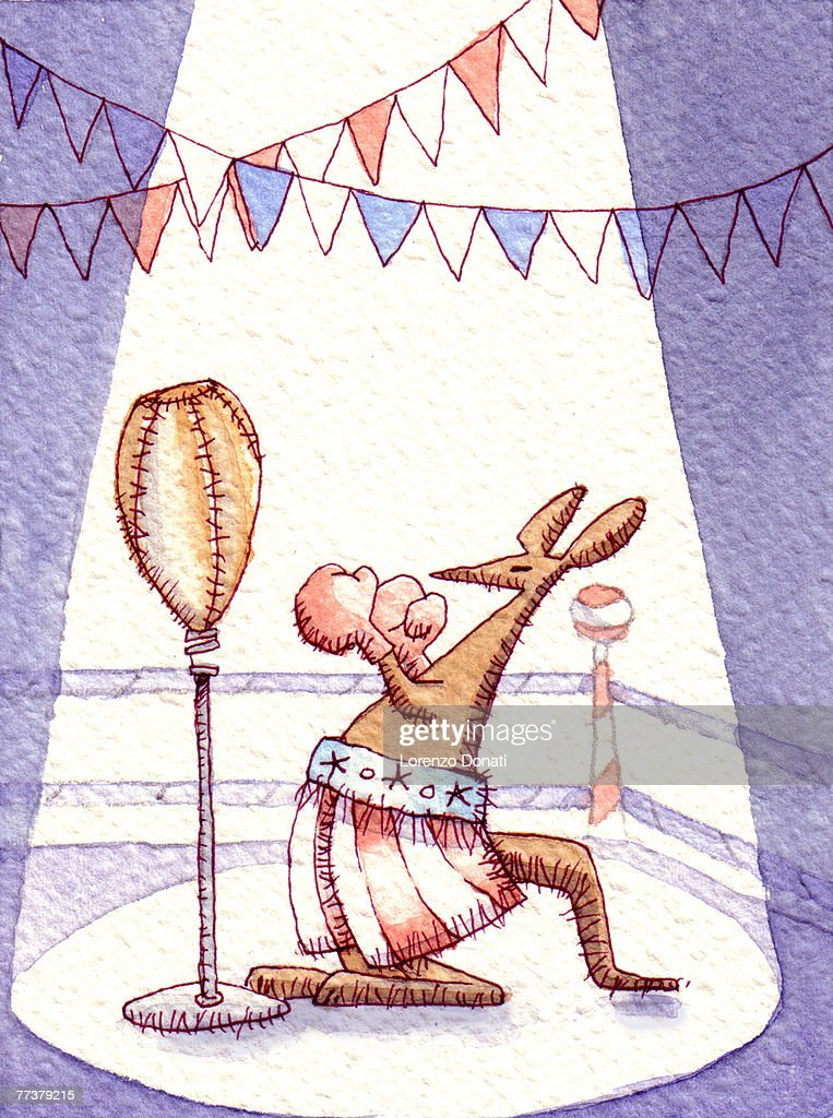 Circus kangaroo boxing : Illustration