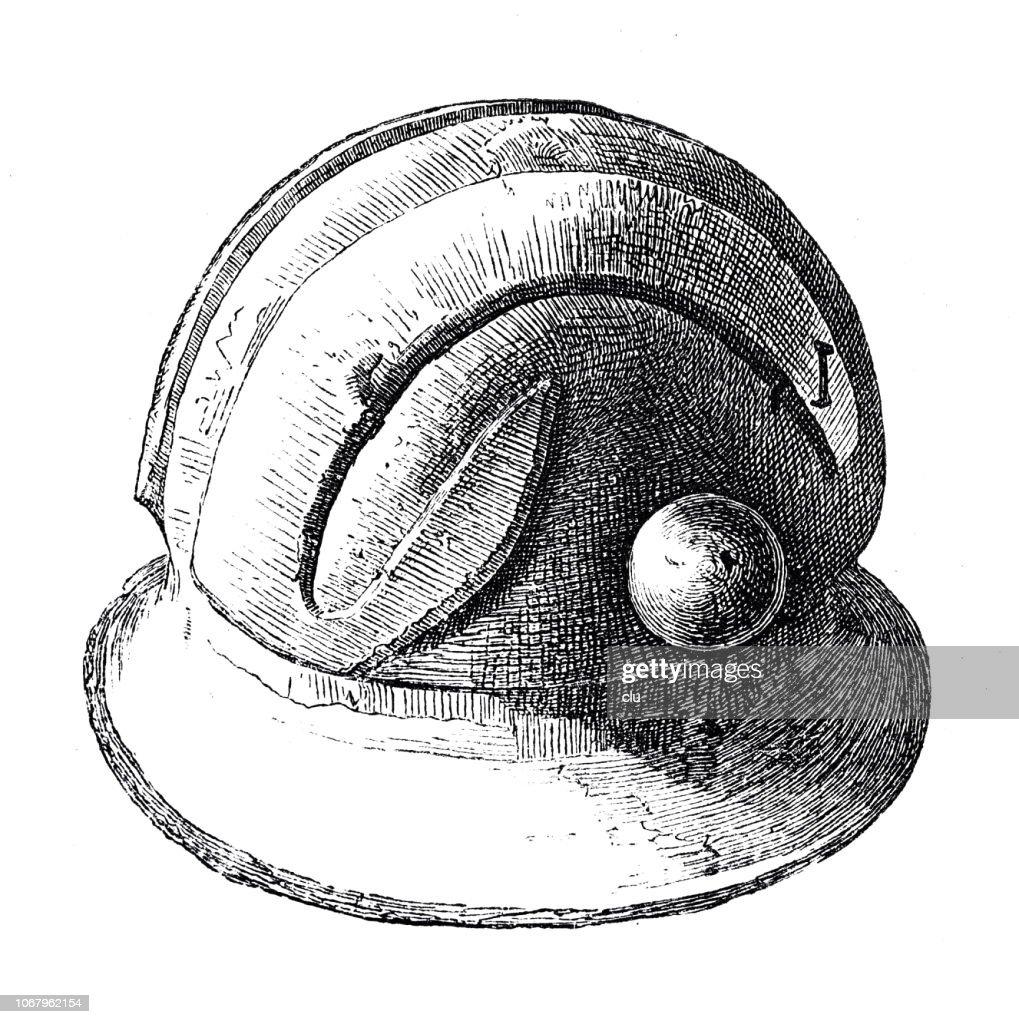 Classical greek: bronze helmet : stock illustration
