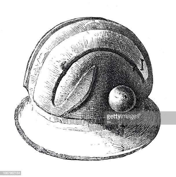 classical greek: bronze helmet - mycenae stock illustrations