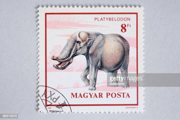 Close up of hungarian post stamp showing a platybelodon