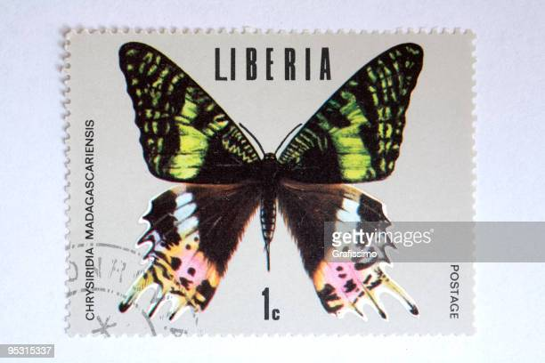 close up of liberian post stamp showing a butterfly - liberia stock illustrations, clip art, cartoons, & icons
