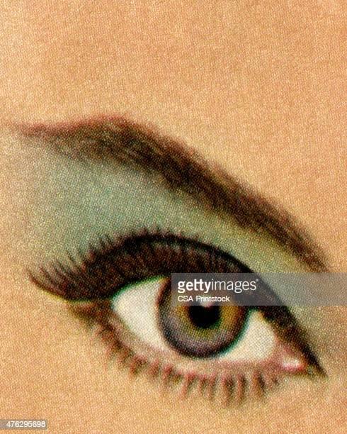 ilustrações, clipart, desenhos animados e ícones de close-up da mulher de olhos - sobrancelha