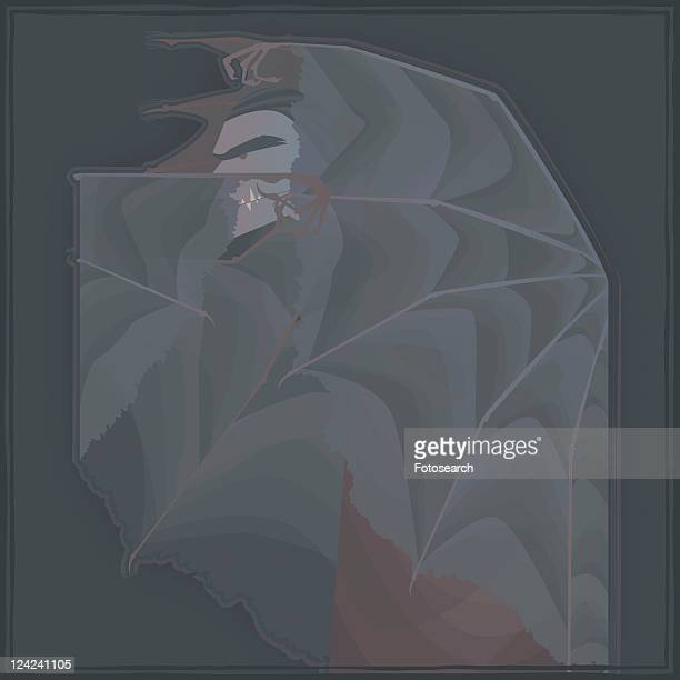close-up of a vampire covered with wings - animal limb stock illustrations, clip art, cartoons, & icons