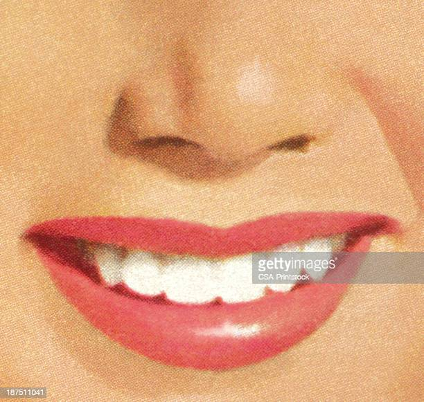 close-up of a woman's smile with red lips and white teeth - human nose stock illustrations