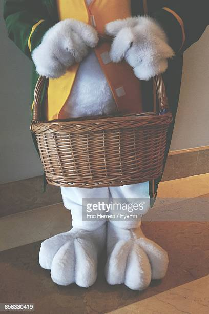 close-up of easter bunny holding basket - easter bunny stock illustrations