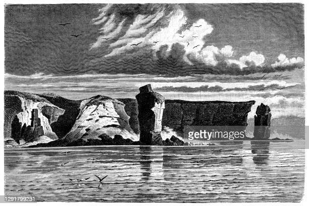 coast of jan mayen island - driftwood stock illustrations