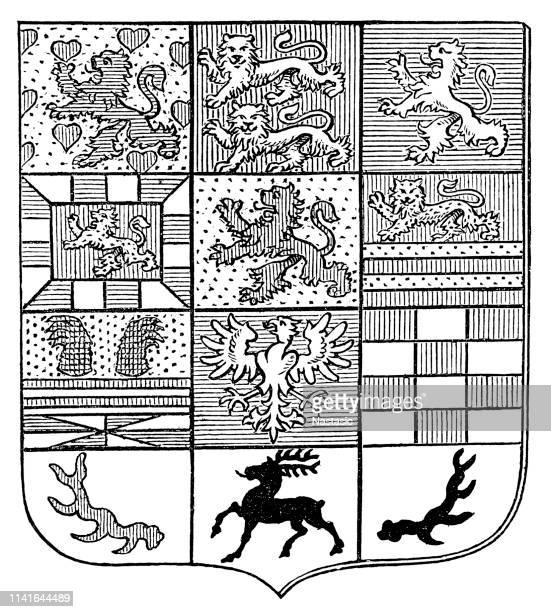 coat of arms of the duke of brunswick - us military emblems stock illustrations