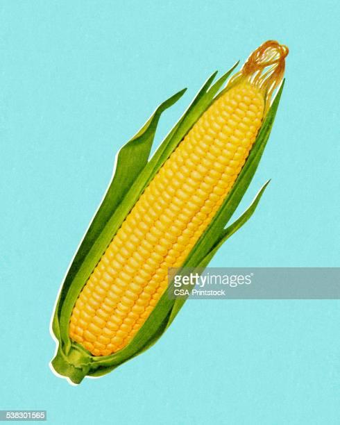 cob of corn - corn stock illustrations, clip art, cartoons, & icons