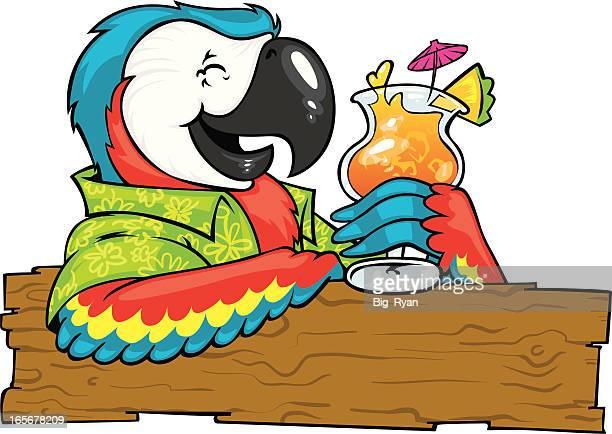 cocktail parrot - hawaiian shirt stock illustrations