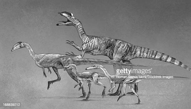 ilustraciones, imágenes clip art, dibujos animados e iconos de stock de coelophysoid diversity from the late triassic to early jurassic period. - triásico