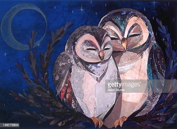 ilustraciones, imágenes clip art, dibujos animados e iconos de stock de a collage of two owls - eyes closed