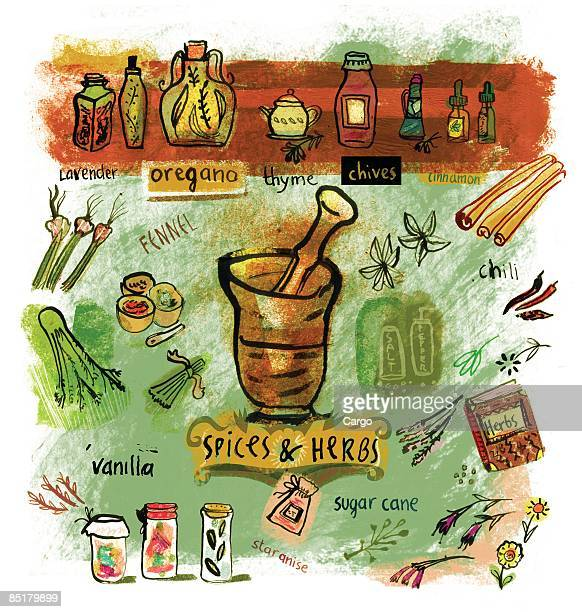 Collage of various spices and herbs