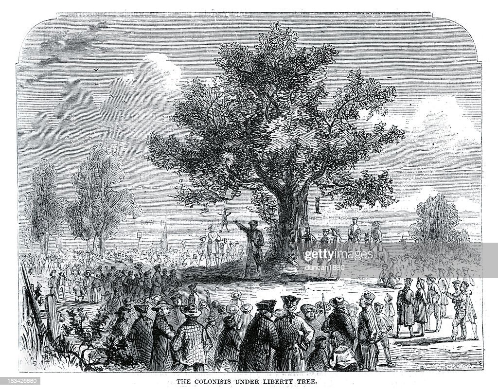 Colonists under the Liberty Tree : stock illustration